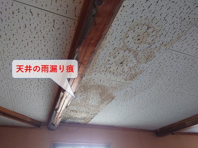 天井の雨漏り痕