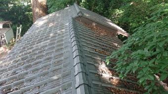 屋根にのった落ち葉