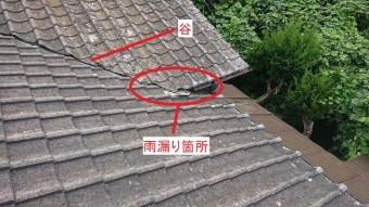 雨漏り箇所の屋根