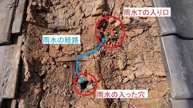 雨漏りの雨水の経路
