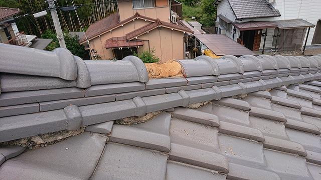 隅棟の雨漏り調査