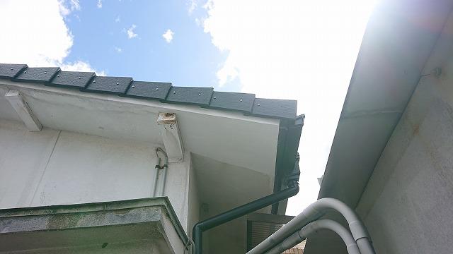 軒天と鼻隠しのモルタル補修