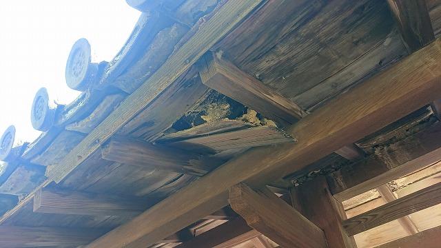 雨漏りによる木部の傷み