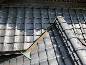谷板金の落ち葉掃除