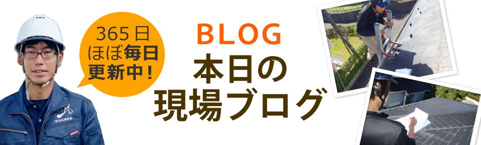 西条市、新居浜市、今治市やその周辺エリア、その他地域のブログ