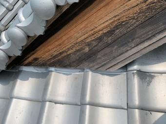ガルバリウム鋼板で修理した瓦