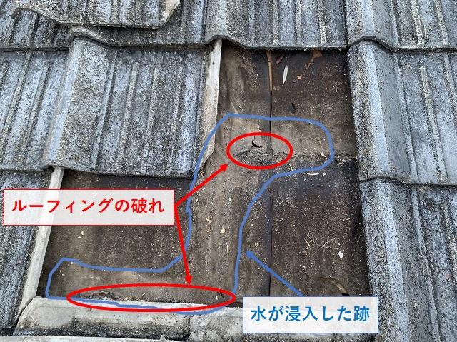 セメント瓦屋根の雨漏りの証拠