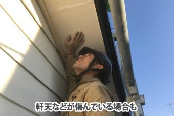 軒天の傷みを確認する作業者